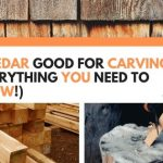 Is Cedar Good For Carving? (Everything You Need To Know!)