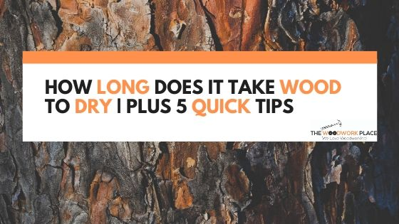 How Long Does It Take Wood To Dry _ Plus 5 Quick Tips
