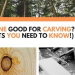 Is Pine Good For Carving? (9 Facts You Need To Know!)