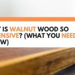 Why Is Walnut Wood So Expensive? (What You Need To Know)