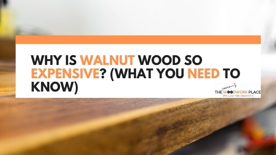 Why Is Walnut Wood So Expensive_ (What You Need To Know)
