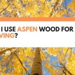 Can I Use Aspen Wood for Carving? (What You Need To Know)