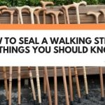How To Seal A Walking Stick (+ 5 Things You Should Know)
