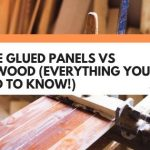 Edge Glued Panels vs Plywood (Everything You Need To Know!)