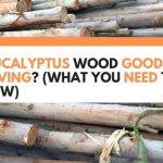 Is Eucalyptus Wood Good for Carving? (What You Need To Know)