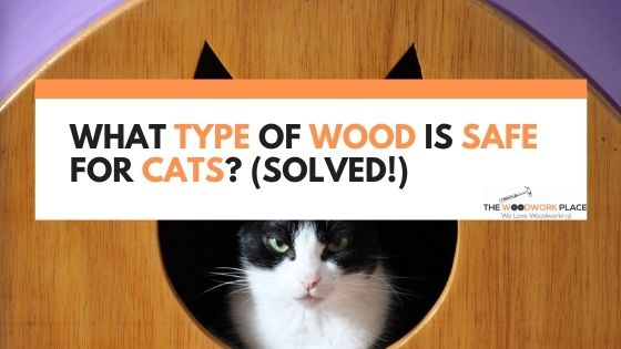 What Type Of Wood Is Safe For Cats